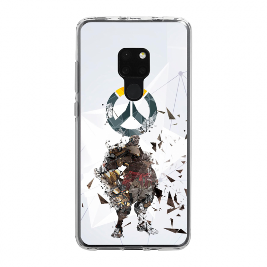 Coque silicone Iphone 11 Pro verre trempé  lion mandala